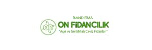 ON FİDANCILIK | Aşılı Ceviz Fidanı Üretimi